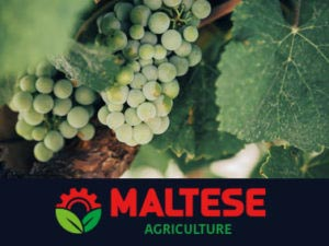 maltese forniture agricole